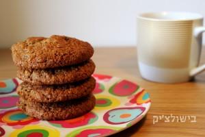עוגיות גרנולה שנחטפות בשנייה